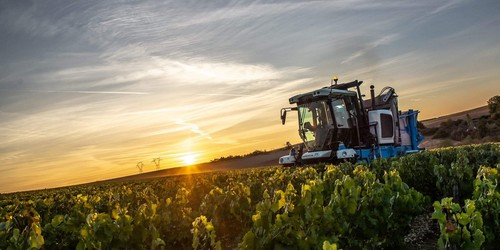 Chablis, vendanges 2018 à la machine